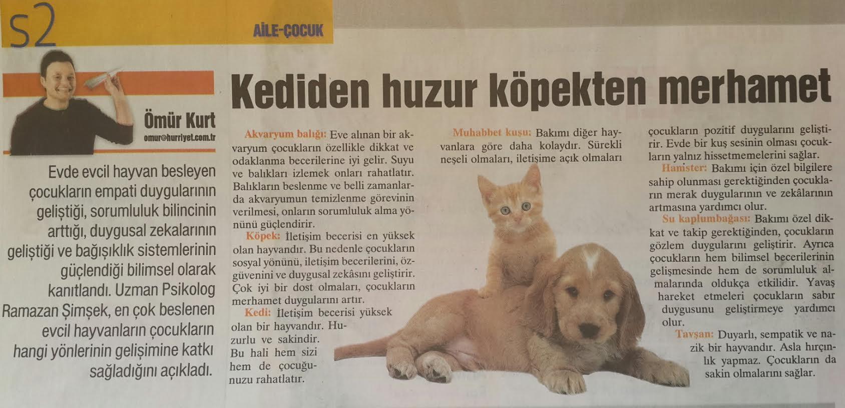 kedi-kopek